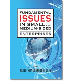 Fundamental Issues in Small and Medium-Sized Enterprises